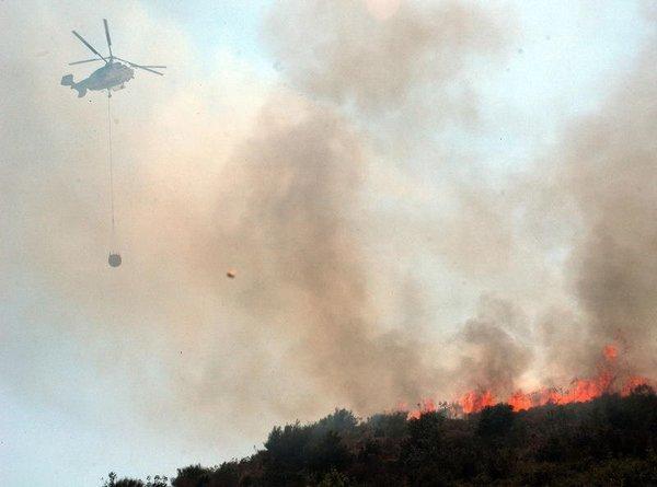 Bodrum'da yangın