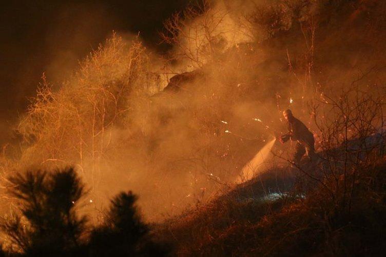 Rize'de 70 hektar ormanlık alan kül oldu