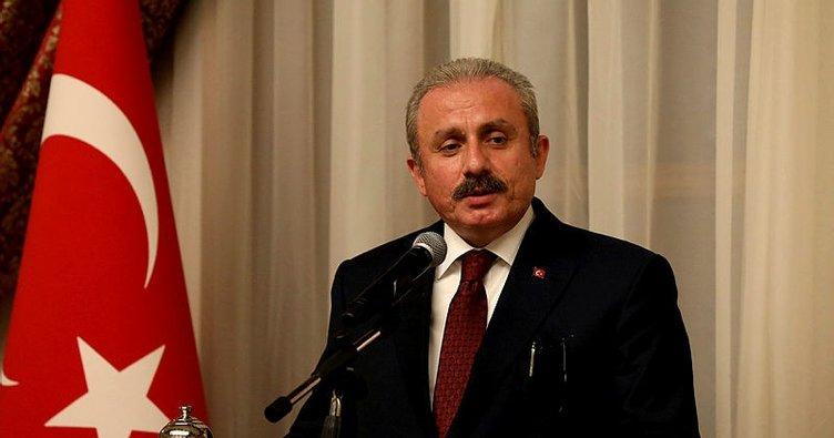 Meclis Başkanı Şentop'tan Barış Pınarı Harekatı mesajı