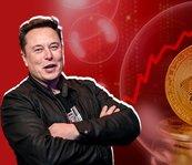 Musk kripto paraları salladı!
