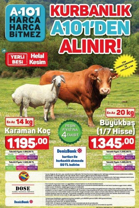 A101 aktüel ürünler listesi sürpriz ürünler burada! 25 Temmuz A101 kataloğu TAM LİSTE
