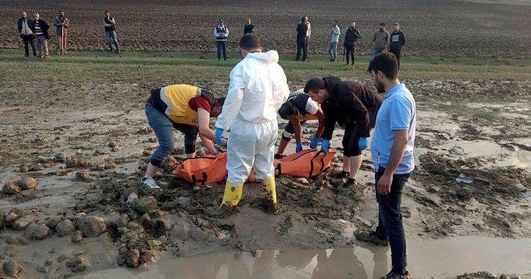 Ağrı'da sel faciası: 4 ölü