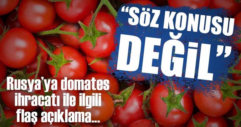 Rusya'ya domates ihracatı ile ilgili bakanlıktan çok önemli açıklama!