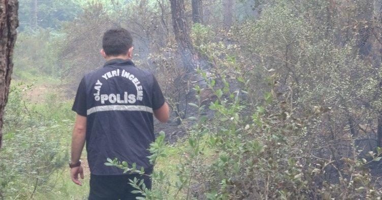 Çekmeköy'de 15 dönümlük orman kül oldu