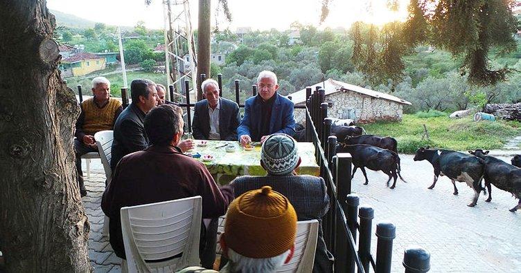 Torbalı'daki Zeytin ve Zeytin Yağı Hasat Festivali için geri sayım