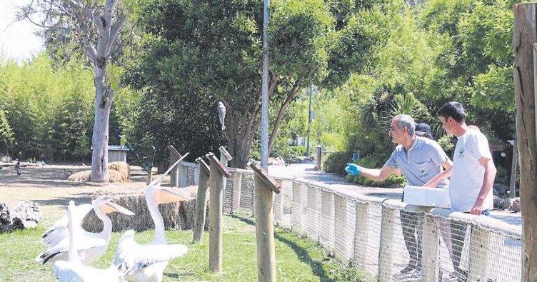 Kazanlar 2 bin 600 hayvan için kaynıyor