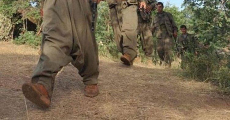 PKK'dan beş terörist için 5 yıllık itiraf