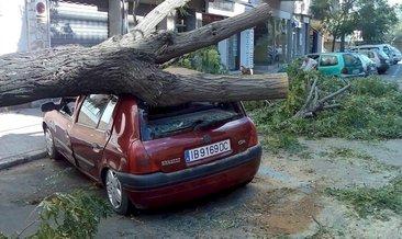 İspanya Gloria Fırtınası'na teslim 5 kentte kırmızı alarm verildi