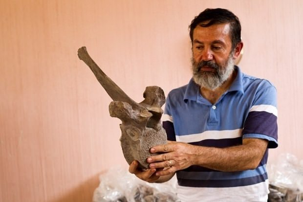 Meksika'da 14 bin yıllık mamut fosili bulundu
