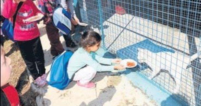 Minik öğrenciler hayvanları besledi
