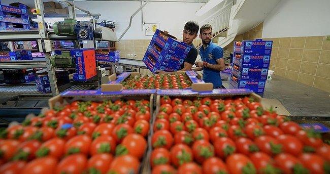 Rus firmalarından yaş sebze meyve talepleri gelmeye başladı