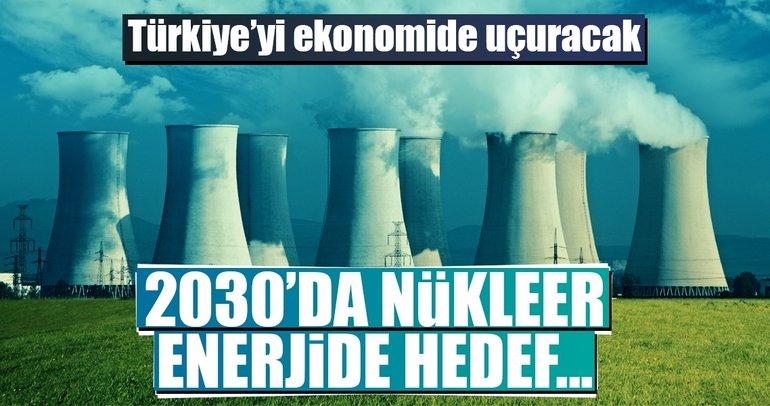 Hedef 2030'da 3 nükleer santral