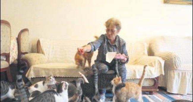 80 kedisiyle birlikte kiralık ev arıyor