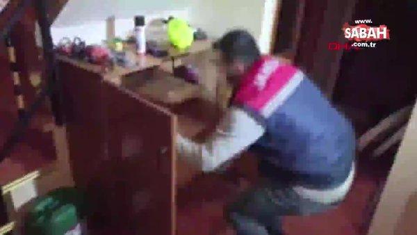Avcılar'da uyuşturucu serasına dönüştürülen terasa baskın kamerada | Video