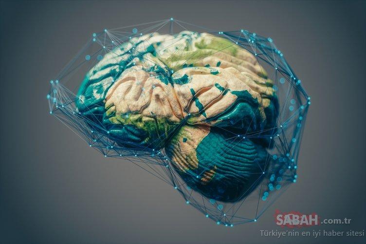 İnsan vücudunun en gizemli organı: Beyin!