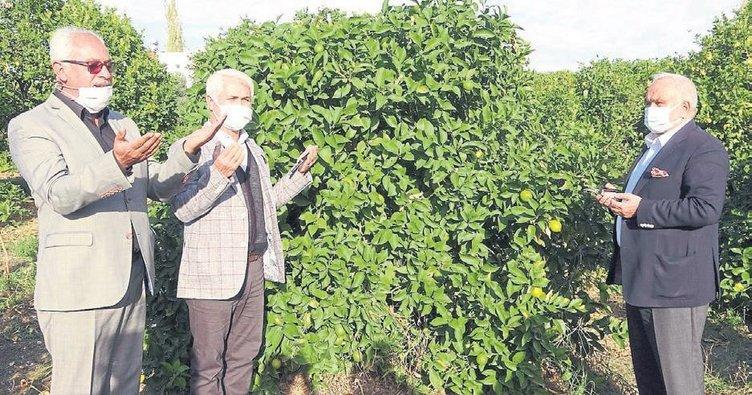 Tescilli Lamas limonu hasadı dua ile başladı