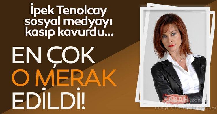 Kurtlar Vadisi'nin yıldızı İpek Tenolcay yıllar sonra geri döndü! Sosyal medyayı salladı!