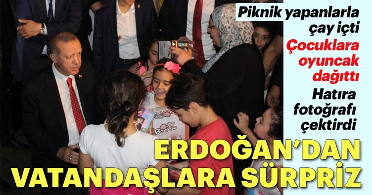 Erdoğan'dan piknik yapan vatandaşlara sürpriz