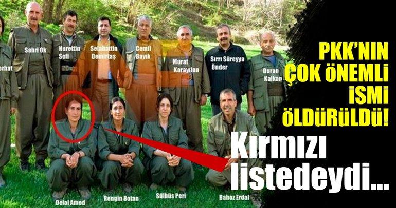 Son dakika: Kırmızı listedeki terörist öldürüldü