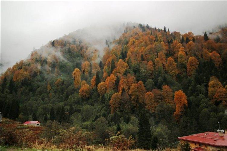 Ayder Yaylası'nda sonbahar