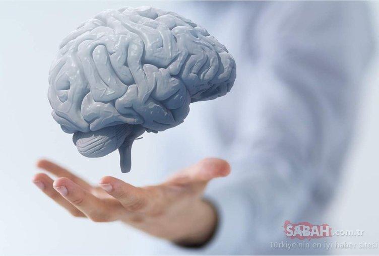 Beyin hücrelerini yeniledikleri ortaya çıkan 6 süper besin şaşırtıyor!