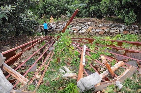 Kasırga hayatı felç etti