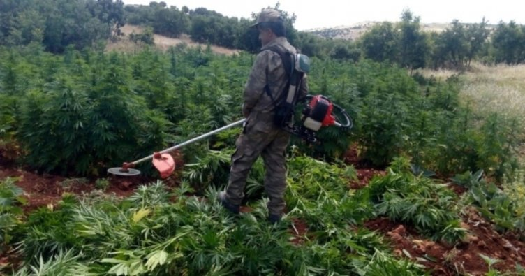 Diyarbakır kırsalında büyük operasyon