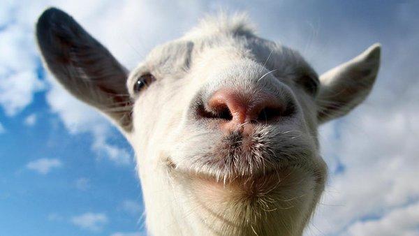 Keçi yoğurdu tüketin!