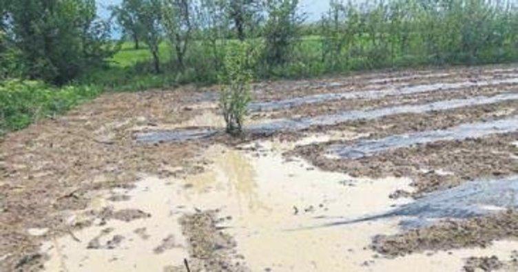 Ani dolu yağışı büyük zarar verdi