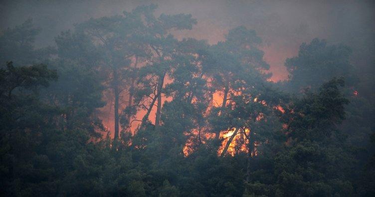 Bakan Pakdemirli: Antalya'daki yangın kontrol altına alındı