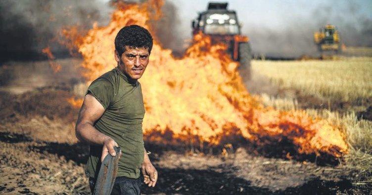 Esad ve YPG'den buğday işkencesi