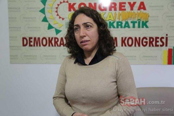 HDP'li vekil polis memurunun kolunu ısırdı
