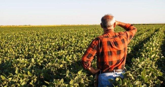 Küresel gıda fiyatları 7 yılın zirvesine yükseldi