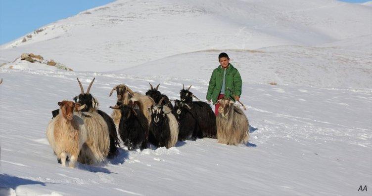 Kışın zorlu şartlarında hayvancılık yapıyorlar