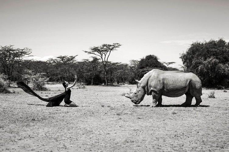 Vahşi hayvanlarla fotoğraf çektirenler