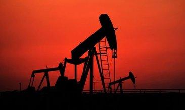 ABD petrol fiyatı tahminini 11 dolar düşürdü!