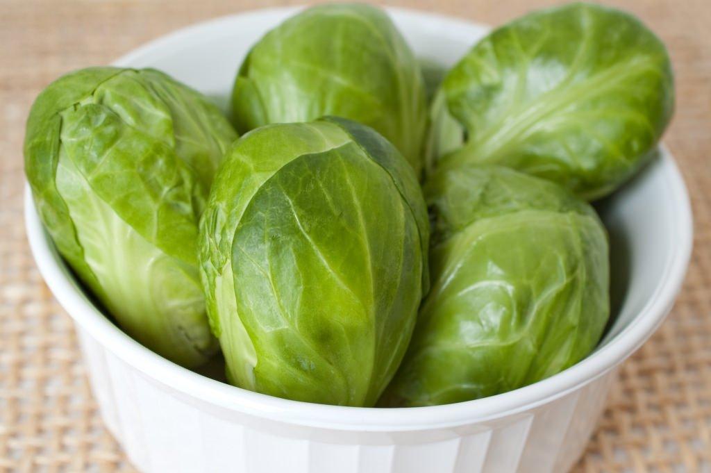 брюссельская капуста польза и вред для здоровья