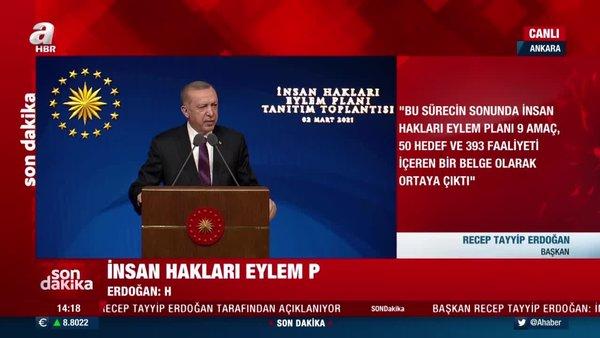Başkan Erdoğan açıkladı! İşte 11 maddelik İnsan Hakları Eylem Planı | Video