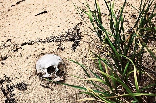 Diri diri gömüldüler!
