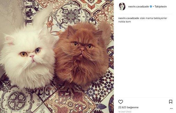 Ünlülerin Instagram paylaşımları (07.12.2017)