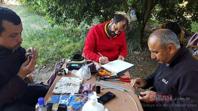 İzmir yalıçapkını Antalya'da ilk kez yakalandı
