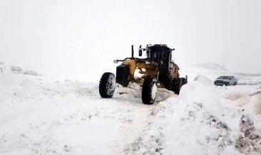Siirt Pervari'de kardan kapanan 12 köy yolu açıldı