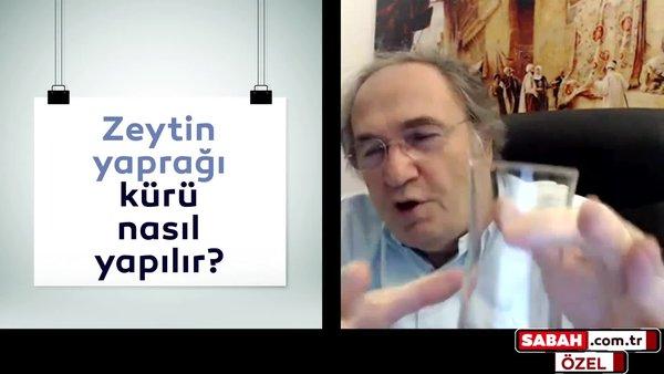 """Prof. Dr. İbrahim Saraçoğlu ilk kez sabah.com.tr'ye açıkladı! """"Bu bitki sayesinde diyet yapmadan ayda iki kilo vereceksiniz"""""""