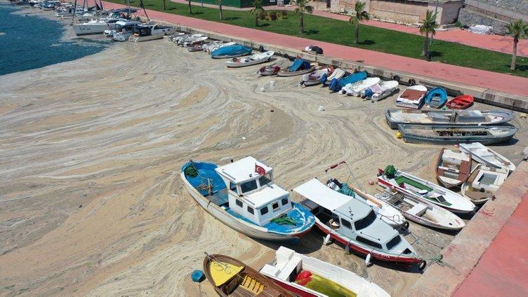 Son dakika | Marmara'da müsilajla deniz salyası ilgili Bakan Kurum'dan açıklama