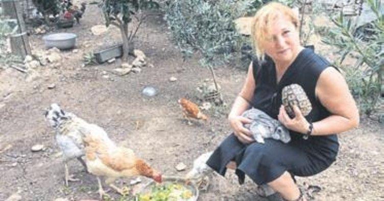 Nuray öğretmen ölümden dönen dostlarına kavuştu