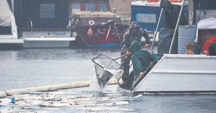 Urla'da fuel oil akan deniz temizleniyor
