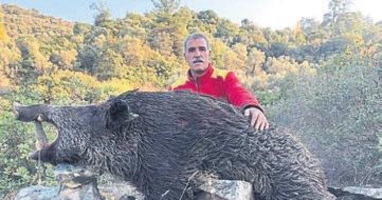Domuz avlarken arkadaşını vurdu