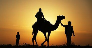 Gazze'de deve yarışı