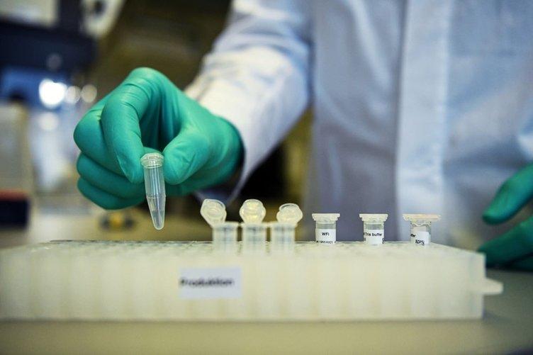 ABD'den son dakika corona virüsü aşısı müjdesi! 400 mikro iğneli, aşırı ölçeklendirilebilir! Denenmeye başlandı...