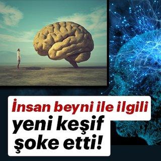 İnsan beyni ile ilgili keşif şoke etti